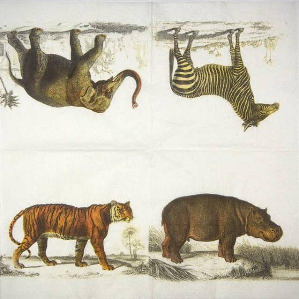 Lunch Napkins (25) - Safari animals