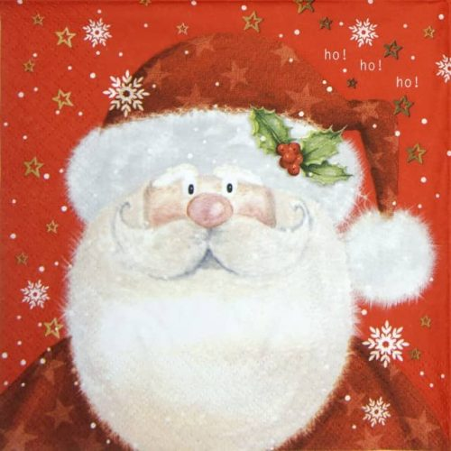 Lunch Napkins (20) - Saint Nick red