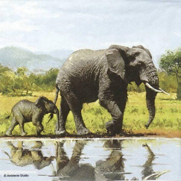 Paper Napkin - Elephants