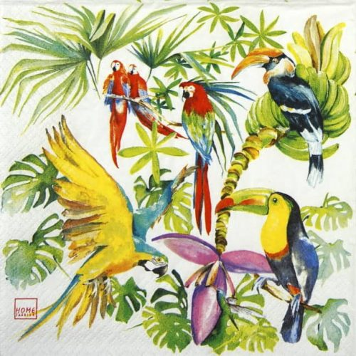 Paper Napkin - Birds of paradise