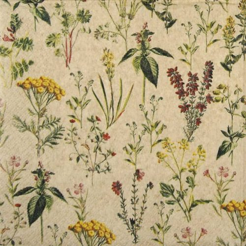 Lunch Napkins (20) - Herbal Meadow