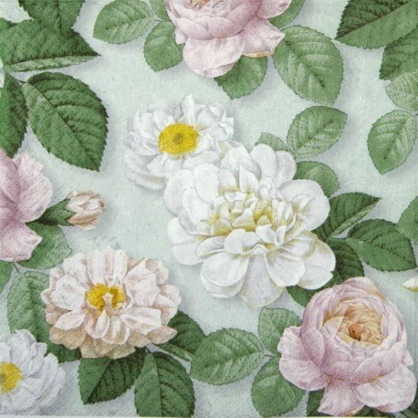 Paper Napkin - La Rosa mint