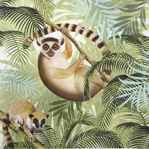 Lunch Napkins (20) - Lemurs