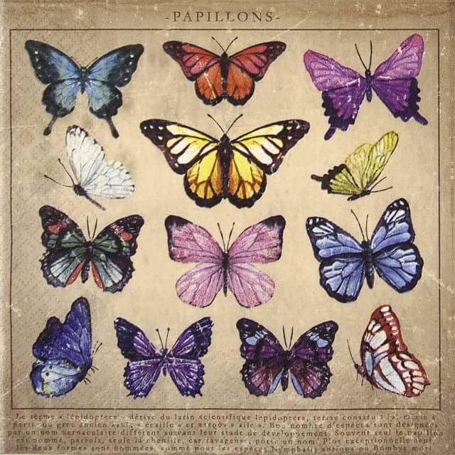 Paper Napkin - Papillons