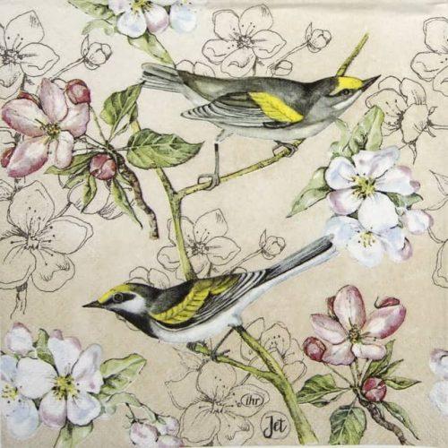 Paper Napkin - Birds Symphony cream
