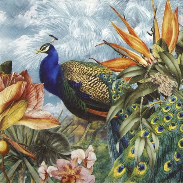 Paper Napkin - Paradise Peacock