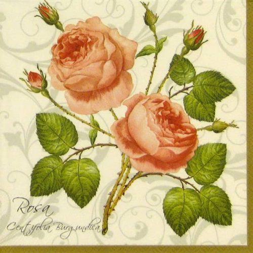 Lunch Napkins (20) - Rosa Centifolia white