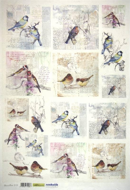 Rice Paper - Uccellini