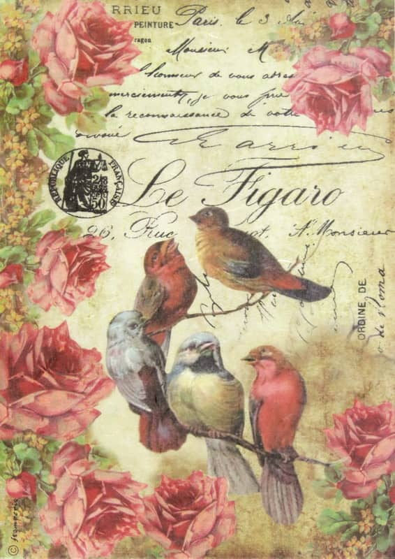 Rice Paper - Le Figaro Birds