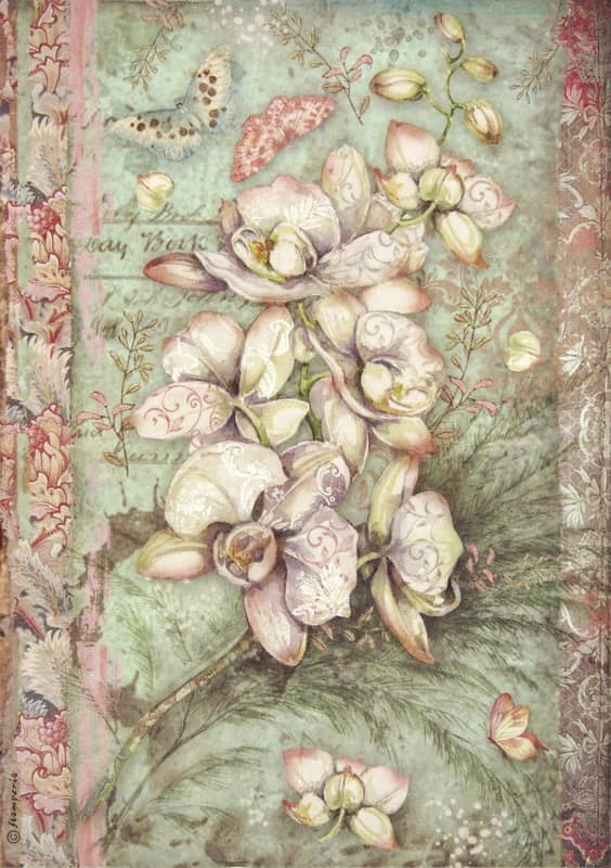 Rice Paper - White Orchid