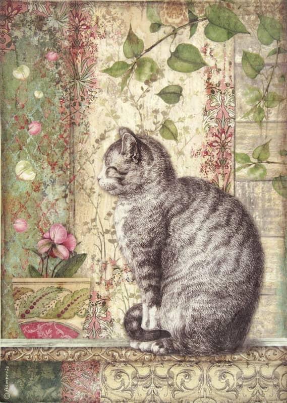 Rice Paper - Cat