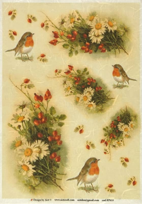 Rice Paper - Vintage Robin & Flowers