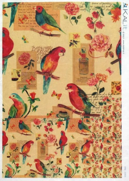 Rice Paper - Colorful Bird- A/4