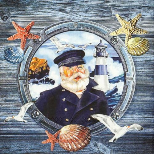 Lunch Napkins (20) - Captain in hat