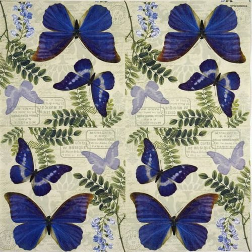 Lunch Napkins (20) - Blue Morpho