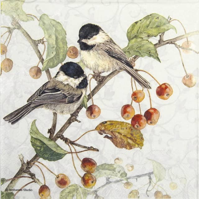 Paper Napkin - Chickadee