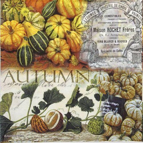 Paper Napkin - Autumn Pumpkins