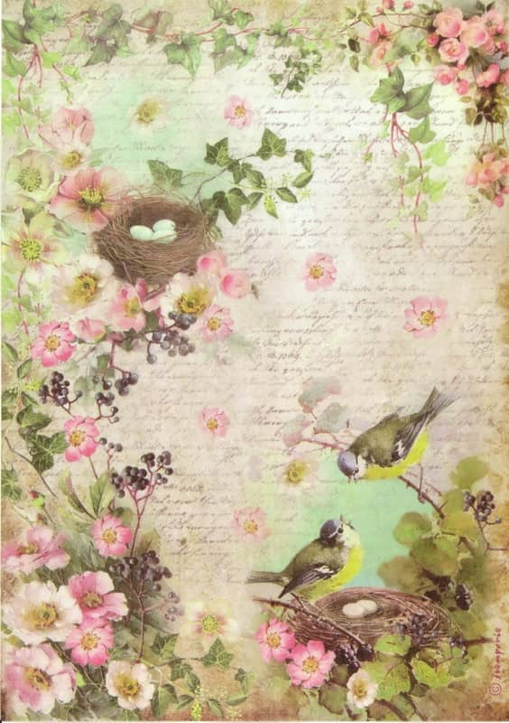 Rice Paper - Wild roses and nests