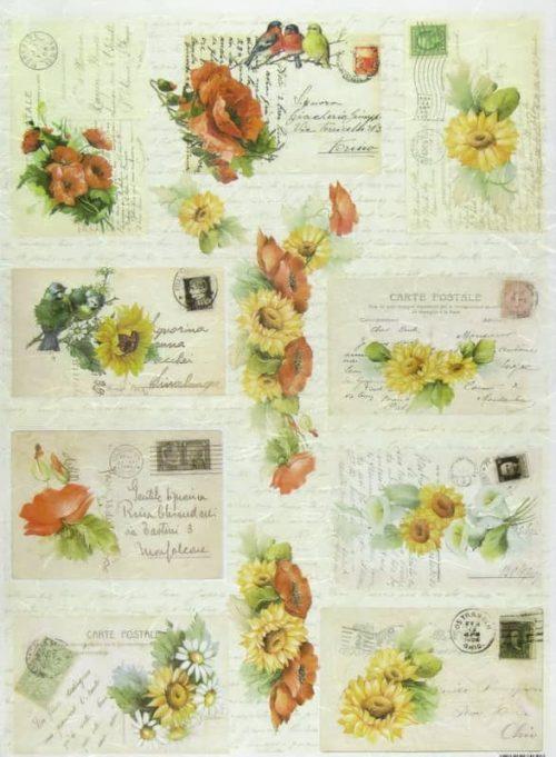Rice Paper - Carte Postale-
