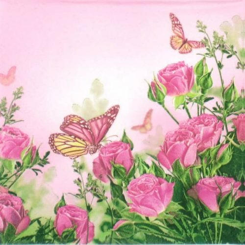 Lunch Napkins (20) - Roses Butterflies