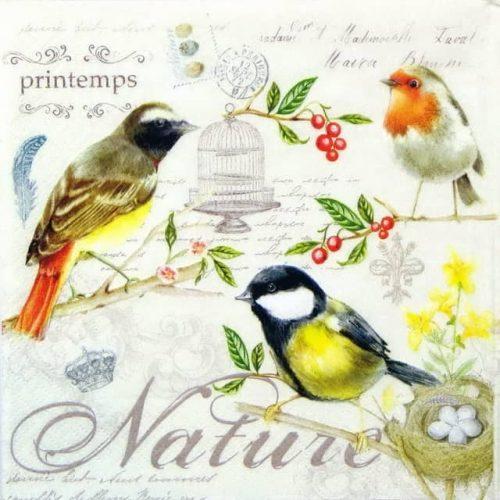 Paper Napkin - Les Oiseaux