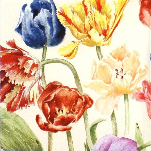 Paper Napkin - Mona Svärd: Amsterdam Tulips