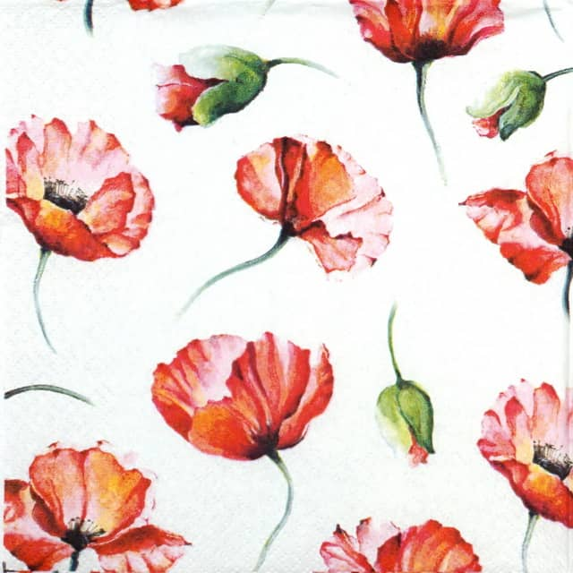 Paper Napkin - Poppy Drawing