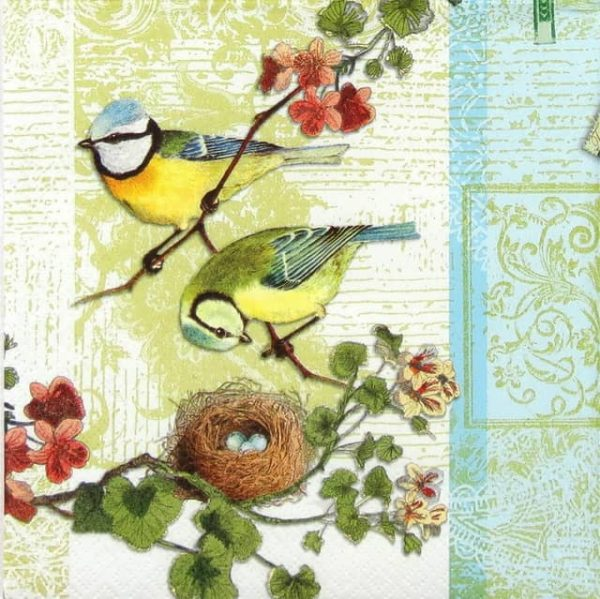 Lunch Napkins (20) - Bird Family