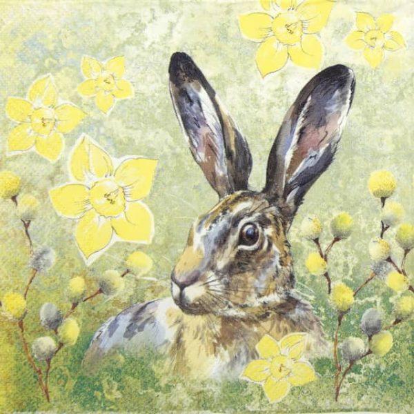 Paper Napkin - Kurt Rabbit