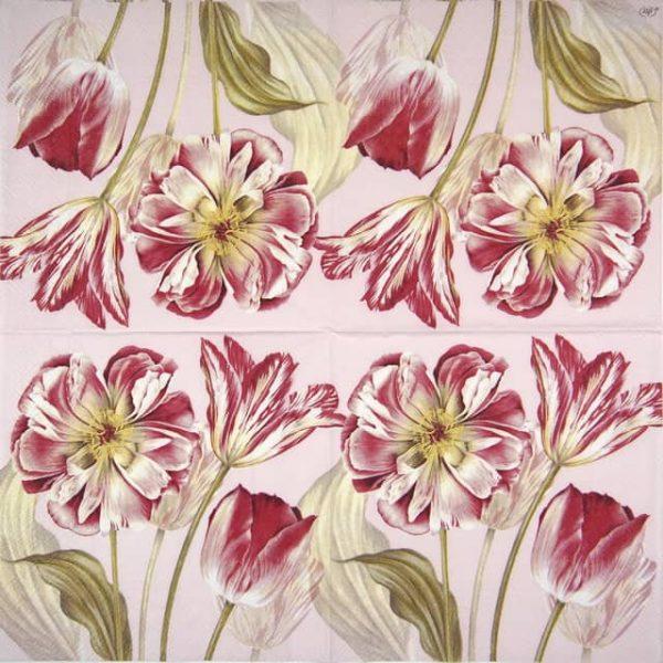Paper Napkin - Majestic Tulips rose