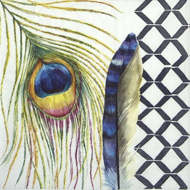 Lunch Napkins (20) - Modern Feathers