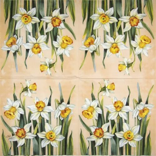 Lunch Napkins (20) - White Narcissus apricot)