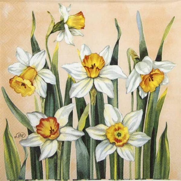 Lunch Napkins (20) - White Narcissus apricot)