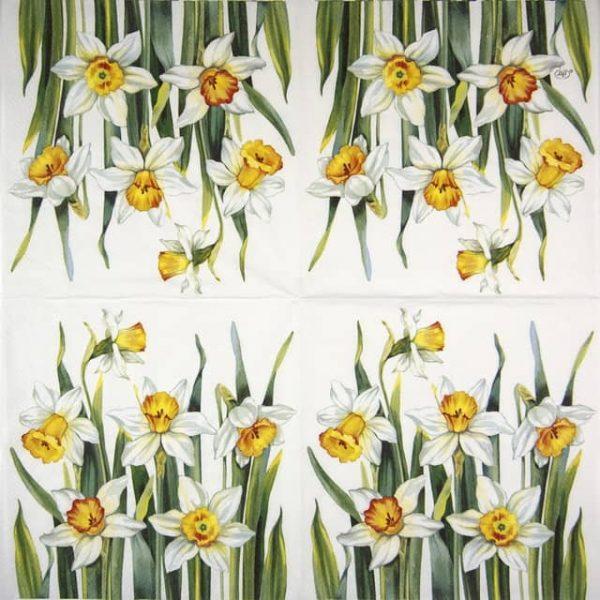 Lunch Napkins (20) - White Narcissus white