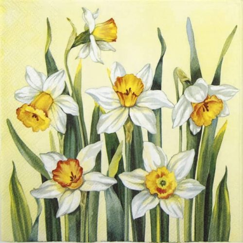 Lunch Napkins (20) - White Narcissus yellow