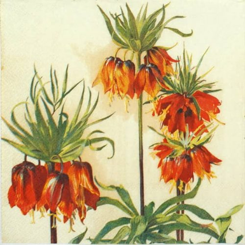 Lunch Napkins (20) - Fritillaria