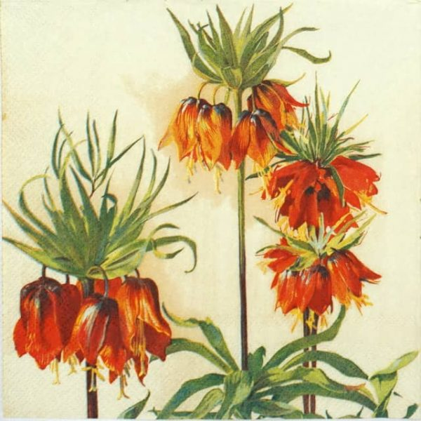 Paper Napkin - Fritillaria