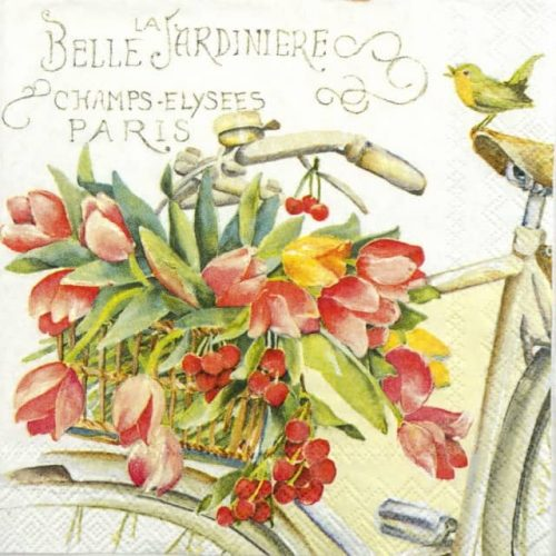 Cocktail Napkin - Belle La Jardiniere