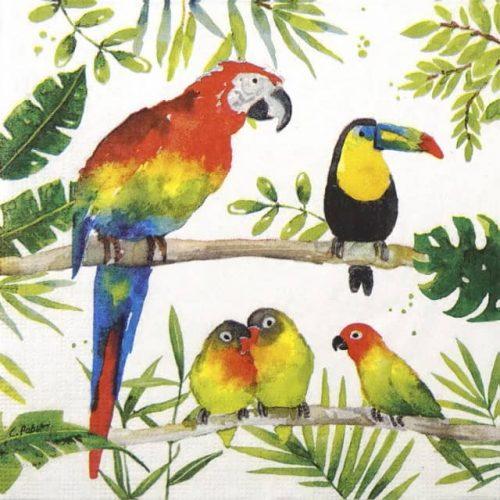 Paper Napkin - Carola Pabst: Tropical Birds