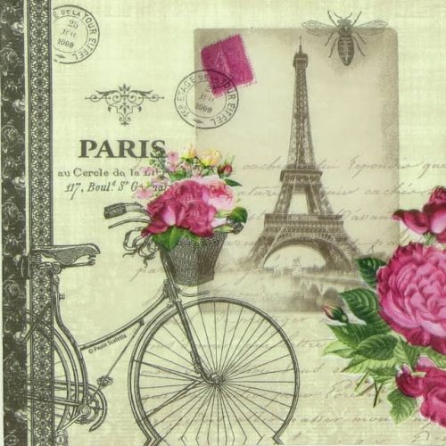 Lunch Napkins (20) - Paula Scaletta: Véio Parisian