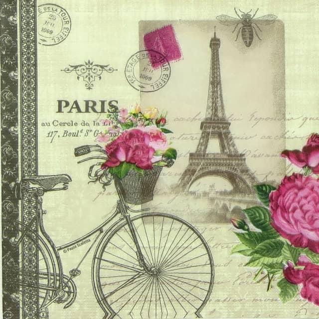 Paper Napkin - Velo Paris Napkin