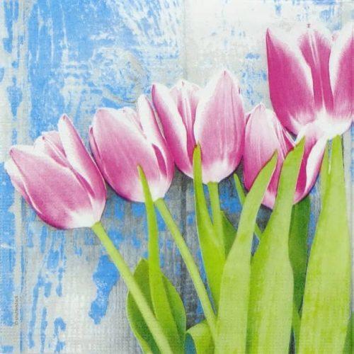 Paper Napkin - Tulipe Fucsia