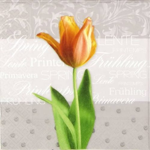 Lunch Napkins (20) - Spring Tulip