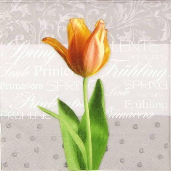 Lunch Napkins (20) - Spring Tulip