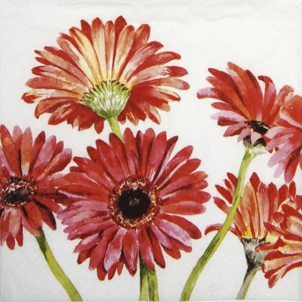 Paper Napkin - Gerbera art