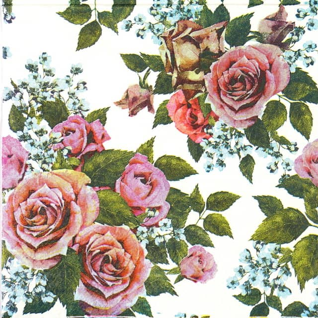 Lunch Napkins (20) - Red Roses on white