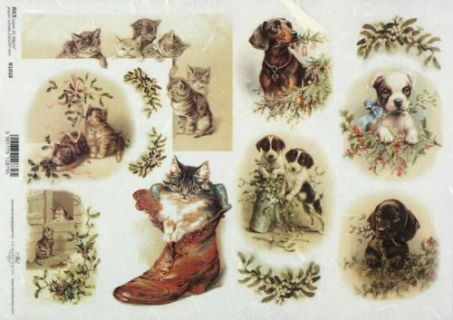 Rice Paper - Winter Cats