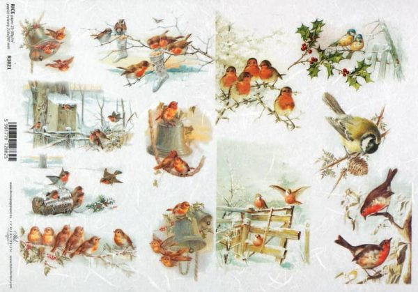 Rice Paper - Vintage Bird Family 2
