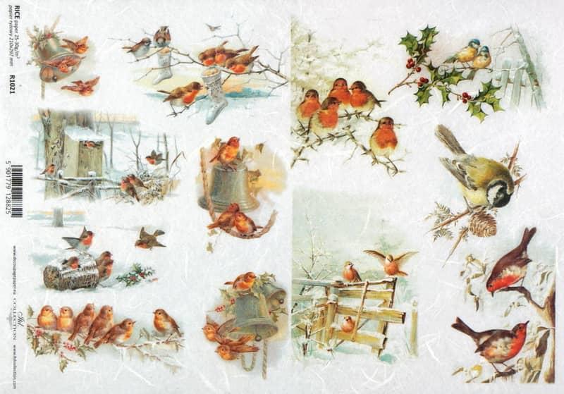 Rice Paper - Vintage Bird Family 2