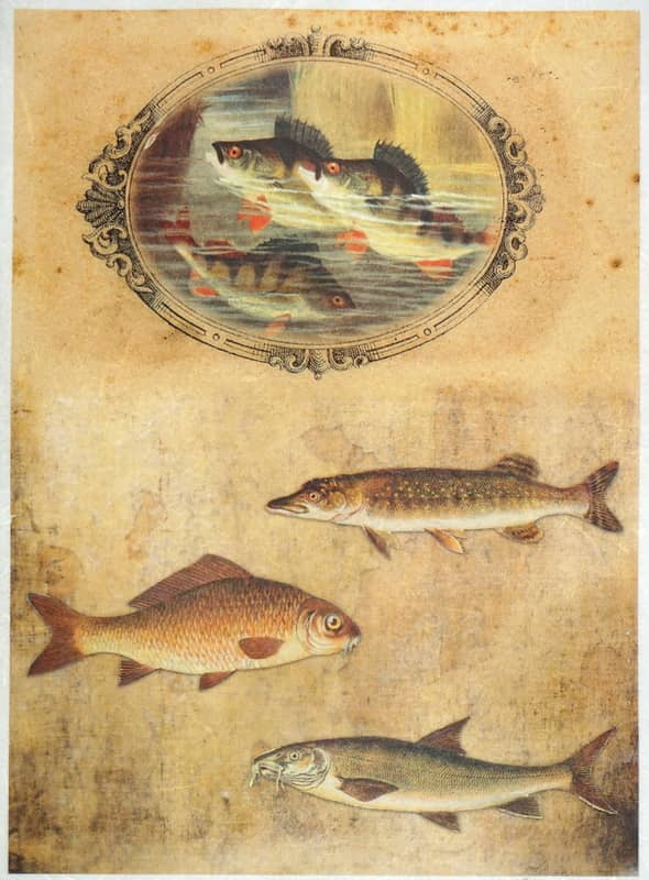 Rice Paper - Vintage Hobby Fishing 2